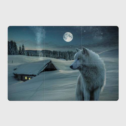 Ночь в Тайге