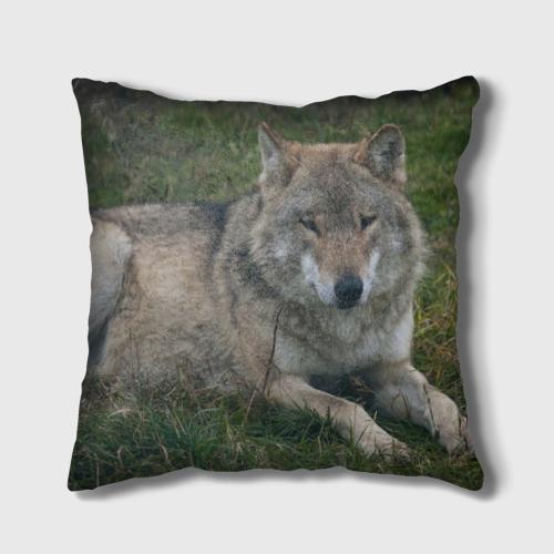 Подушка 3D  Фото 02, Серый волк