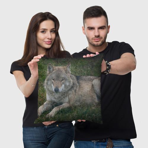 Подушка 3D  Фото 05, Серый волк