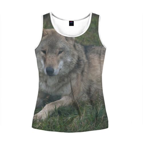 Женская майка 3D  Фото 01, Серый волк