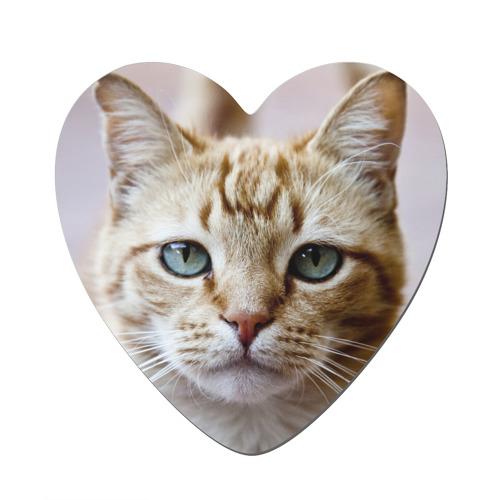 Рыжий кот, зеленые глаза