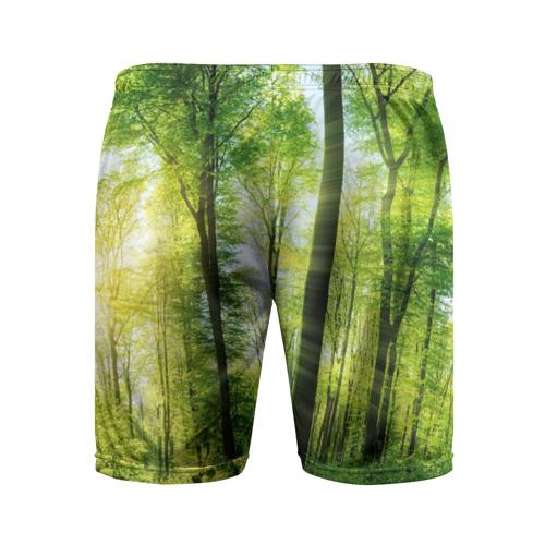 Мужские шорты 3D спортивные  Фото 02, Солнечный лес