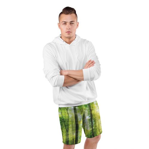 Мужские шорты 3D спортивные  Фото 05, Солнечный лес
