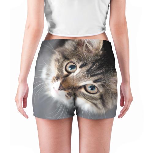 Женские шорты 3D  Фото 04, Кошачий взгляд