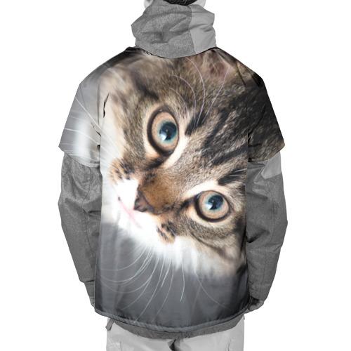 Накидка на куртку 3D  Фото 02, Кошачий взгляд
