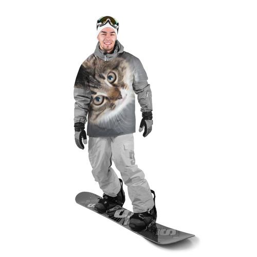Накидка на куртку 3D  Фото 03, Кошачий взгляд