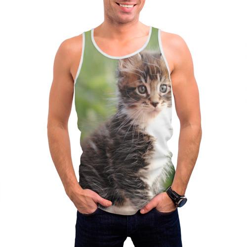 Мужская майка 3D  Фото 03, Породистый котено