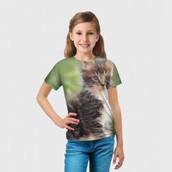 Породистый котено