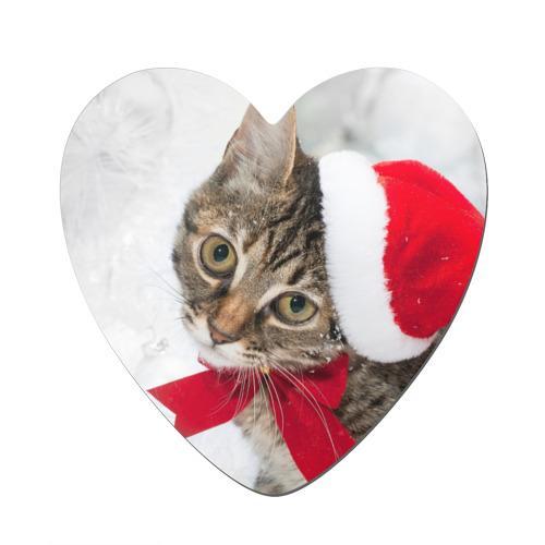 Новогодний кот в колпаке
