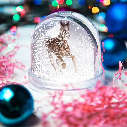 Водяной шар со снегом  Фото 04, Жеребенок