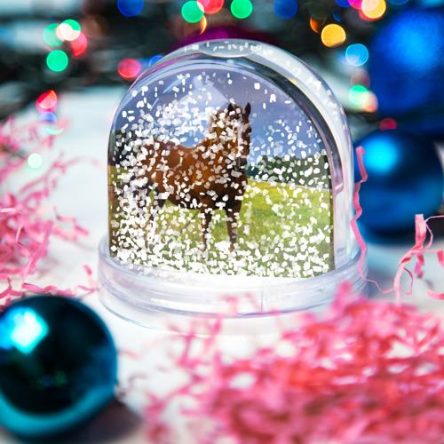 Водяной шар со снегом  Фото 04, Конь