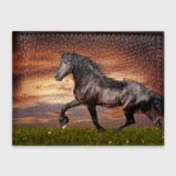 Черный конь