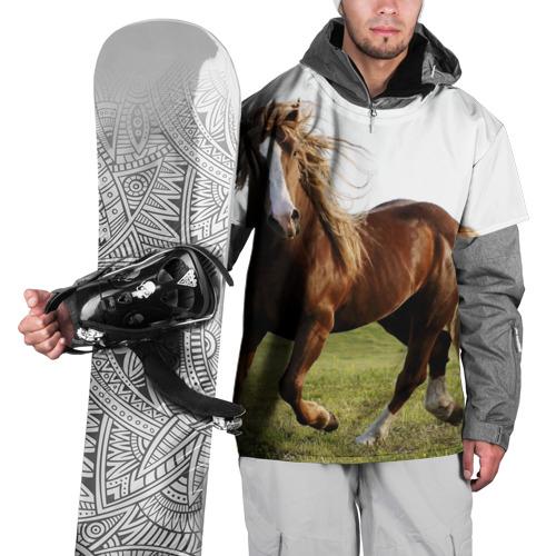 Накидка на куртку 3D  Фото 01, Лошадь