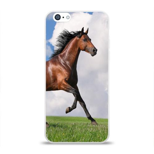 Чехол для Apple iPhone 6 силиконовый глянцевый  Фото 01, Жеребец