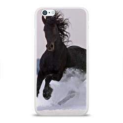 Грациозный конь
