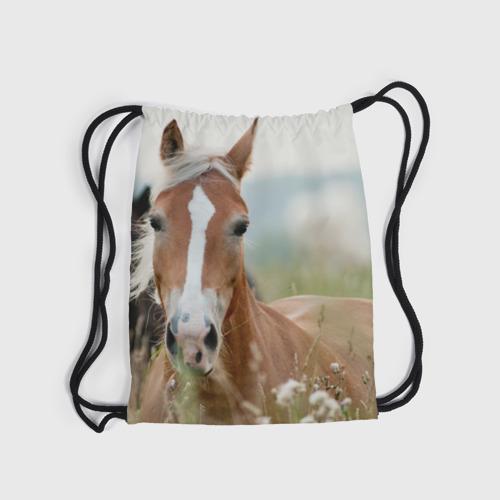 Рюкзак-мешок 3D  Фото 04, Лошадь