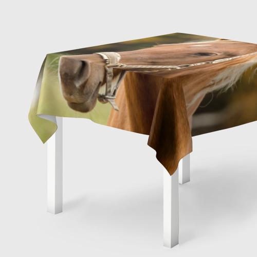 Скатерть 3D  Фото 01, Лошадь