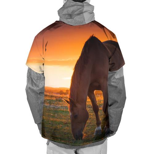 Накидка на куртку 3D  Фото 02, Лошадь на закате