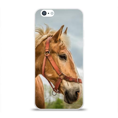 Чехол для Apple iPhone 6 силиконовый глянцевый  Фото 01, Лошадка