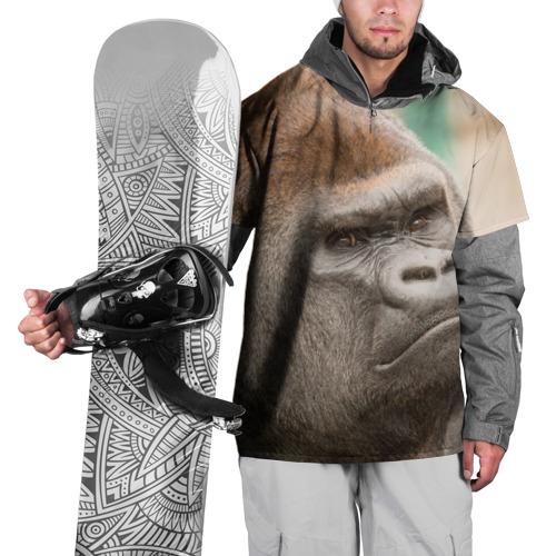 Накидка на куртку 3D  Фото 01, Обезьяна