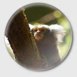 Обезьянка на дереве