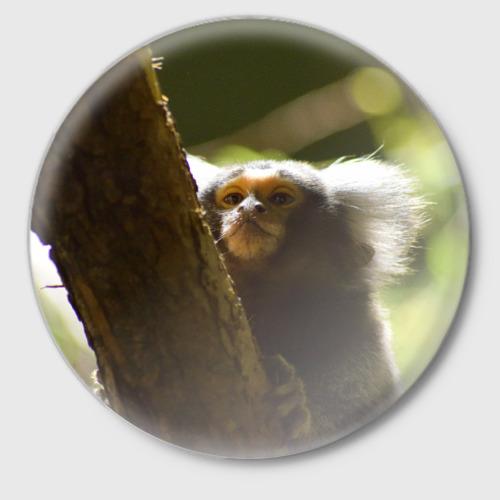 Значок  Фото 01, Обезьянка на дереве