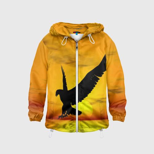 Орел на закате