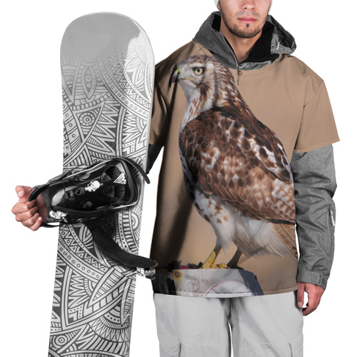 Накидка на куртку 3D  Фото 01, Ястреб