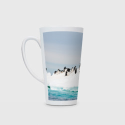 Пингвины на айсберге