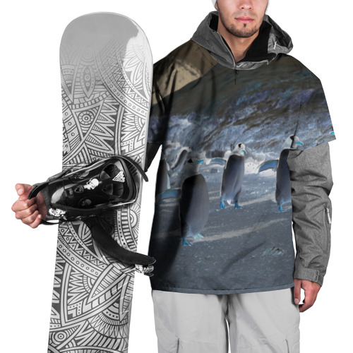 Накидка на куртку 3D  Фото 01, Ночные пингвины в горах