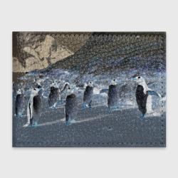 Ночные пингвины в горах