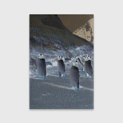 Обложка для паспорта матовая кожа  Фото 02, Ночные пингвины в горах