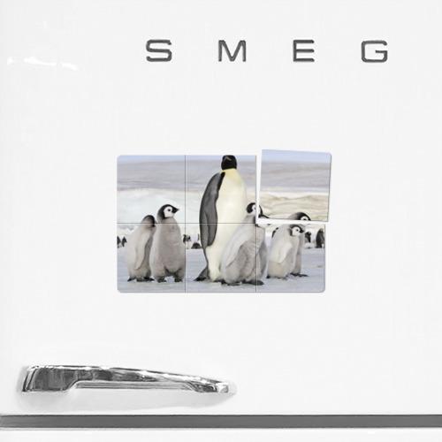 Магнитный плакат 3Х2  Фото 02, Пингвин и пингвинята