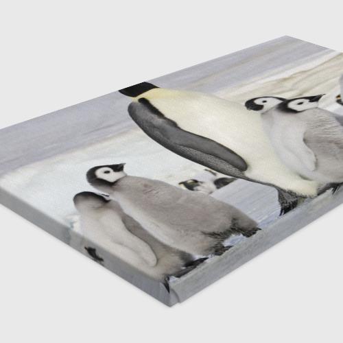 Холст прямоугольный  Фото 04, Пингвин и пингвинята