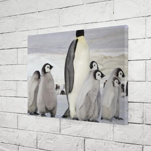 Холст прямоугольный  Фото 03, Пингвин и пингвинята