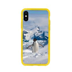 Пингвин в горах