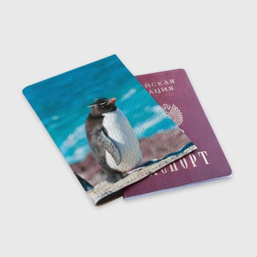 Обложка для паспорта матовая кожа  Фото 03, Пингвин