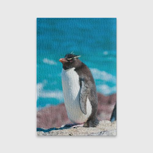 Обложка для паспорта матовая кожа  Фото 02, Пингвин