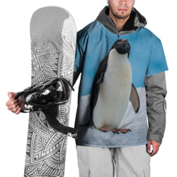 Пингвин на айсберге