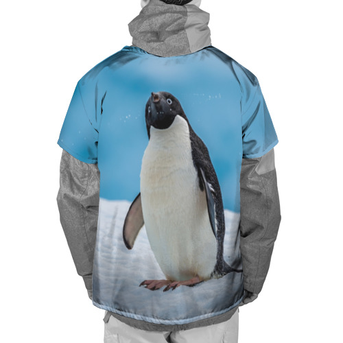 Накидка на куртку 3D  Фото 02, Пингвин на айсберге