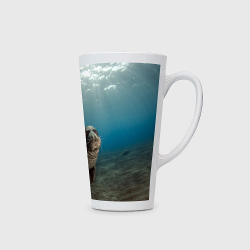 Кружка Латте  Фото 02, Тюлень под водой