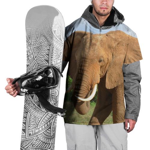 Накидка на куртку 3D  Фото 01, Слон