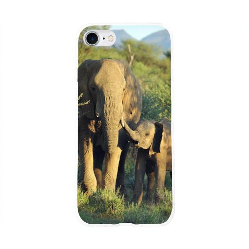 Чехол для Apple iPhone 8 силиконовый глянцевый  Фото 01, Слониха и слоненок в природе