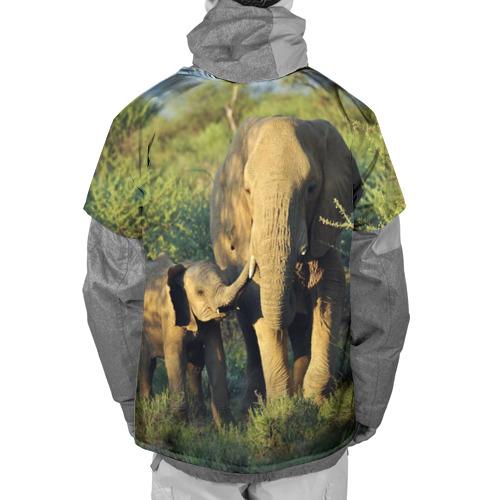 Накидка на куртку 3D  Фото 02, Слониха и слоненок в природе