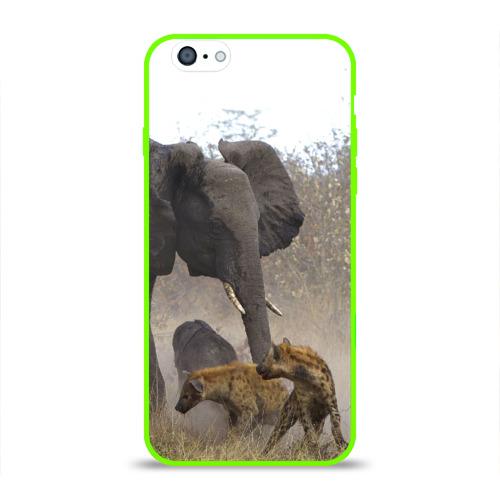Гиены охотятся на слона