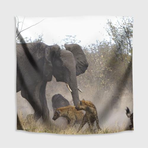 Скатерть 3D  Фото 02, Гиены охотятся на слона