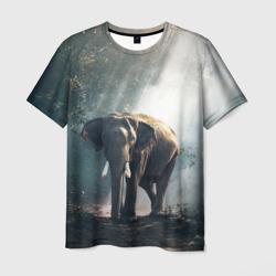 Слон в лесу