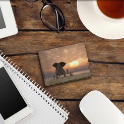 Слон с собакой на лавке, закат
