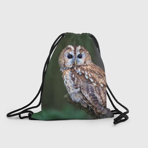 Рюкзак-мешок 3D  Фото 01, Сова