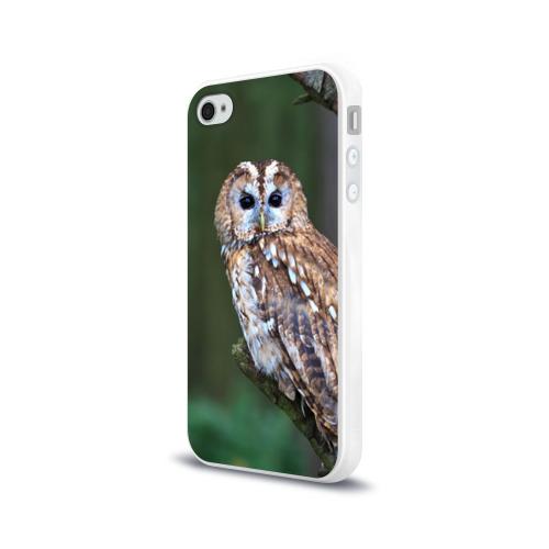 Чехол для Apple iPhone 4/4S силиконовый глянцевый  Фото 03, Сова